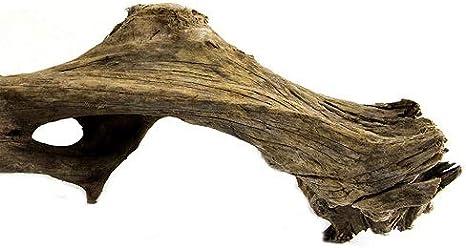 Natural Galapagos 05282 2-3 Ft. Driftwood Branches