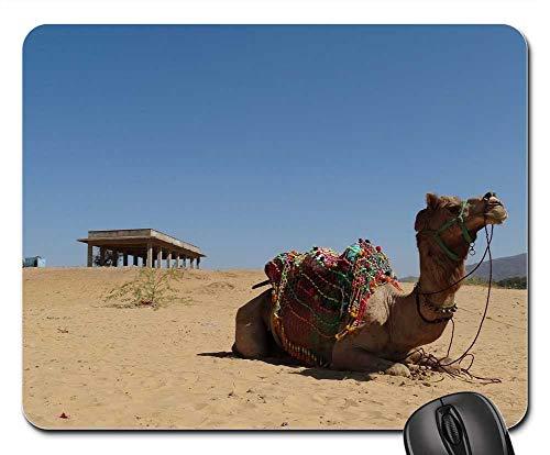 Mouse Pads - Travel India Desert Pushkar Camel