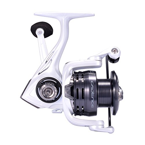 CS4 Spinning Reel,Cadence Ultralight Fast Speed Carbon Frame Fishing Reel with 8 Low Torque Bearings Super Smooth Powerful Fishing Reel Spinning with 16 Lb Carbon Fiber Drag 6.2 1 Gear Ratio Reel