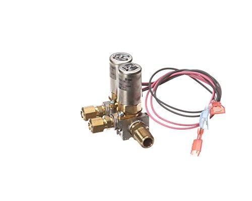 Blodgett 39316 Solenoid Assembly, 24V, Dual, Boiler, 9
