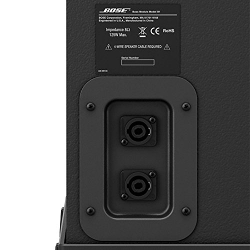 Bose L1 Model 1S System Double B1 Bass with ToneMatch Audio Engine