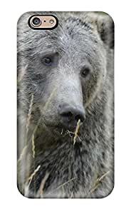 Excellent Design Grizzly Bears Case Cover For Iphone 6
