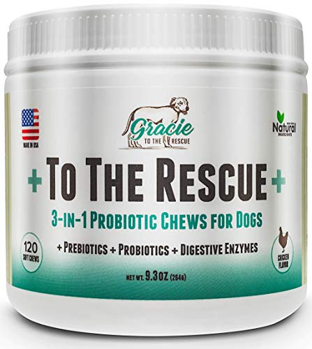 Probiotics for Dogs - All Natural Dog Probiotics, Prebiotics and Digestive Enzymes for Constipation, Immune Support, Diarrhea, Upset Stomach, and UTI's 120 Soft Chews +To The Rescue+