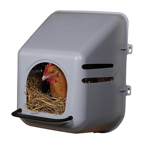 Miller Manufacturing 163620 Single Chicken Nesting Box for Birds TV Non-Branded Items (Pets)
