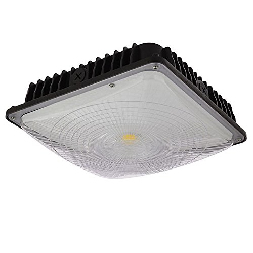 Ceiling Lights For Garage: Amazon.com
