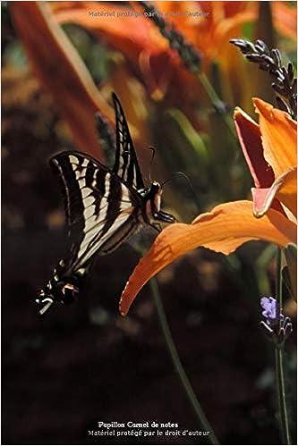 Papillon Carnet notes: