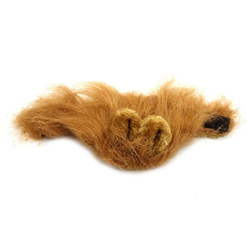 FTXJ Funny Furry Pet Hat Cat Halloween Party Dress Up Lion Mane Wig with Ears (Brown)