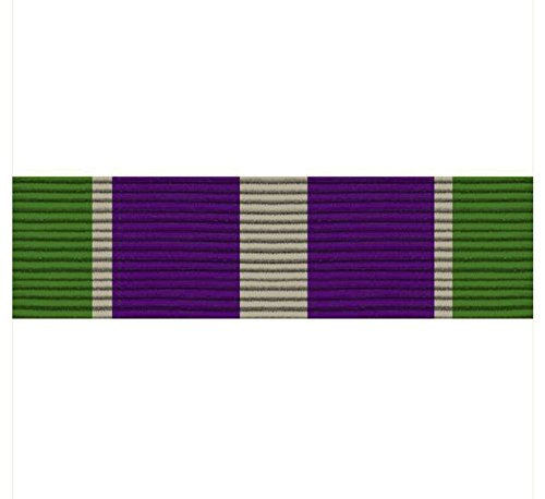 Vanguard Army ROTC Ribbon Unit: N-1-8: AJROTC Honor Cadet