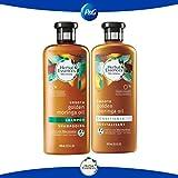 Pack Herbal essences bíorenew smooth golden moringa oil shampoo 400 ml + acondicionador 400 ml