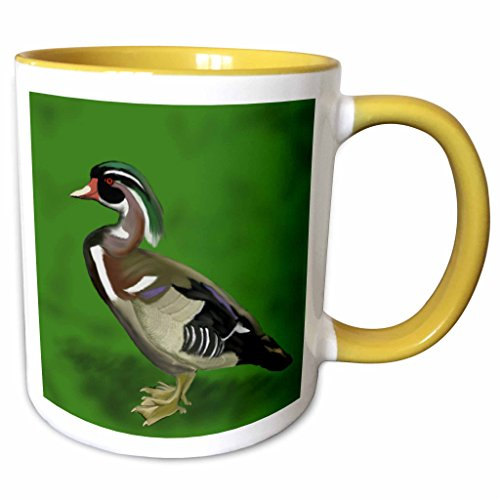 3dRose 777images Digital Paintings Wildlife - Digital oil painting of a Wood Duck. This unusual and colorful bird is shown on a green background. - 15oz Two-Tone Yellow Mug (mug_151931_13)