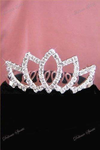 [Crystal Rhinestone Flower Girl Wedding Bridal Prom Bridesmaid Small Tiara Comb] (Diy Pageant Girl Costume)