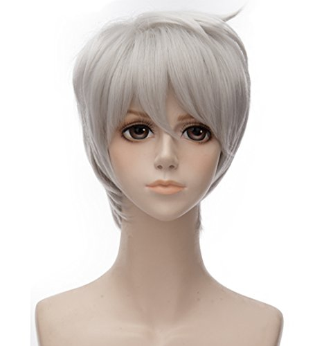 Probeauty Rise of the Guardians Jack Frost Short Silver White Cosplay Costume Wig ()