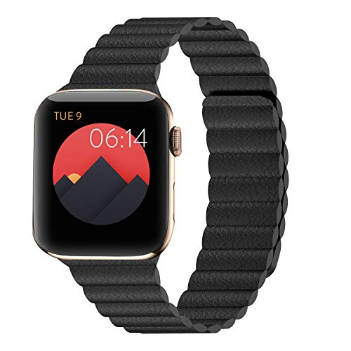I N I Compatible Apple Watch Band product image