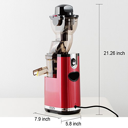 Anti Oxidative Slow Masticating Juicer : SAvTM JE120-08M00 New Electric Masticating Wide Mouth Whole Chute Anti-Oxidative Fruit and ...