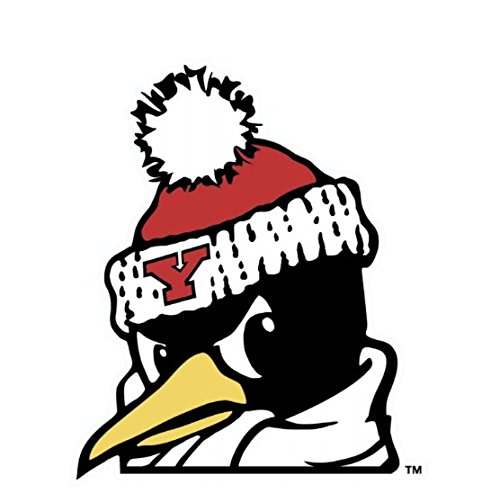 WinCraft Youngstown State Penguins Die Cut Decal 4