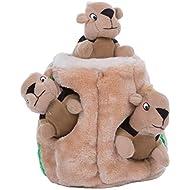 Outward Hound Hide a Squirrel Fun Hide & Seek Interactive Puzzle Plush Dog Toy, 4Piece, Small