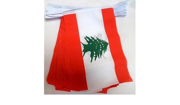 AZ FLAG Guirnalda 6 Metros 20 Banderas de LÍBANO 21x15cm - Bandera LIBANESA 15 x 21 cm - BANDERINES: Amazon.es: Jardín