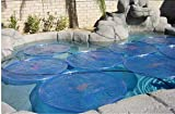 Solar Sun Rings Plain Blue Swimming Pool 3-Pack