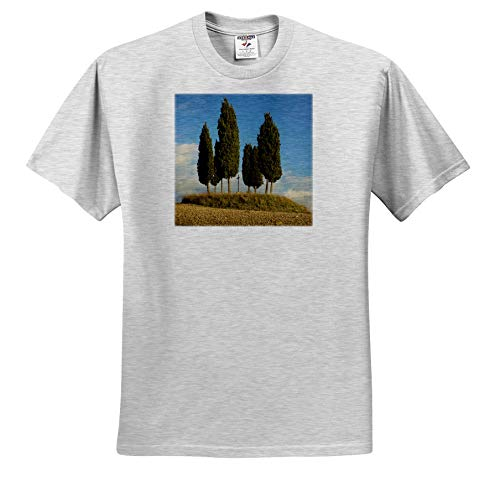3dRose Danita Delimont - Tuscany - Tree Circle and Memorial Cross on Hill, Tuscany, Italy - Toddler Birch-Gray-T-Shirt (4T) (ts_313694_33)