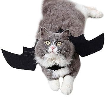 AOLVO - Alas de Gato para Gato, Disfraz de Gato Divertido, Ajustable y Ligero