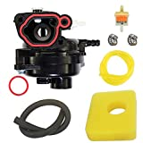 LIYYOO 590556 Carburetor Replacement for Briggs and Stratton 09P702 9P702 550E Vertical Engine Kit Include Air Filter+Fuel Filter+tubing