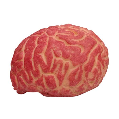 BYETOO Halloween Outside Decoration Props,Soft Bloody Brain Mold Horror Halloween Prop,Trick Scary Fake Human Body Parts Halloween Costume Cosplay Party Decoration Props (Brain) -