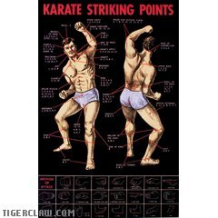 1 X Karate Striking Points Posters