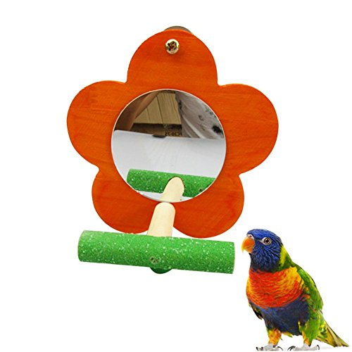 Bird Parrot Mirror Toy with Perch Cage Standing Accessories Parrot Parakeet Budgies Cockatiel Conure Finch Lovebird African Grey Macaw Amazon Cockatoo Birdcage Wood Perch(Color Random) (Flower Shape) Birdcage Mirror