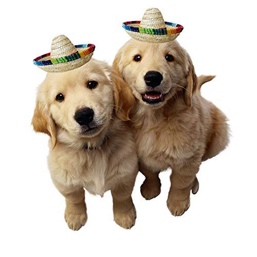 Crazy Night Natural Straw Mini Sombrero New Design Mini Mexican hat ... eceb59ef8964