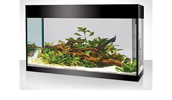 Acquario Askoll Pure L AbsoluteBlack LED (nero lucido) + kit allestimento e manutenzione omaggio: Amazon.es: Jardín