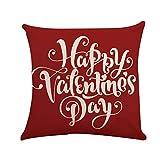 """Funda de cojín de lino para el día de San Valentín, D, 18""""x18"""""""