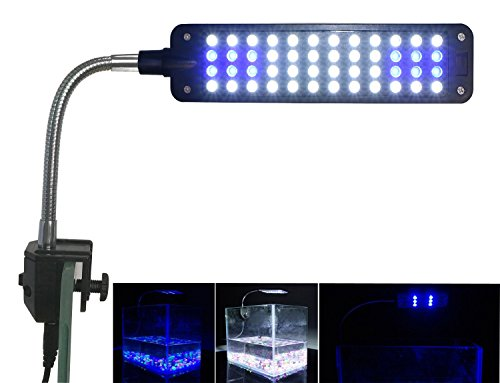 Mingdak Aquarium Light for Fish Tanks Clip on Fish Tank Light 48 LEDs White & Blue ()