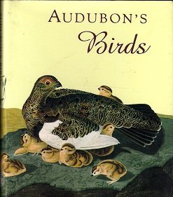 Audubon's Birds (Andrews and Mcmeel Gift Books)