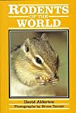 Rodents of the World (Of the World Series)