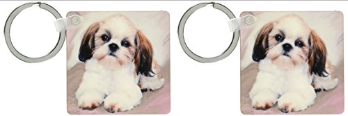 3dRose Shih Tzu puppy - Key Chains, 2.25 x 4.5 inches, set of 2 (kc_4807_1)