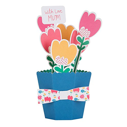 Mum Hallmark Mother's Day Card 'Innovative Pop Up Bouquet' - New Medium