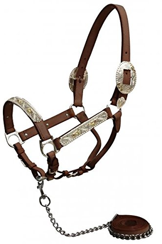 - Showman Horse Engraved Silver Show Halter with Pink Rhinestones. Comes with Matching Chain Leather Lead. Showmanship Western (Medium Oil)