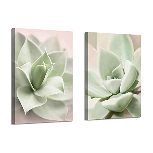 (Canvas Wall Art Painting Print: Succulent Floral Photographic Artwork Decor Picture for Bathroom (24'' x 18'' x 2 Panels) )