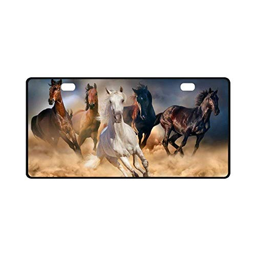 Teisyouhu Horse Herd Run in Desert Sand Storm Against Dramatic Sky Car License Plate Cover Framed Tag Cover Durable Aluminum License Plate Frame for Women