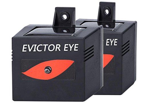 MTL Evictor Eye Solar Powered Animal Repeller for Waterproof, Deterrent Light Nocturnal Animals - 2 ()