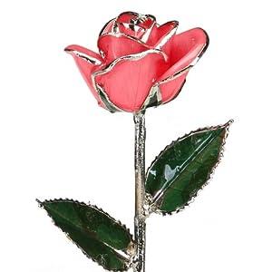 Pink Laquered Platinum Dipped Long Stem Genuine Rose In Gift Box 22
