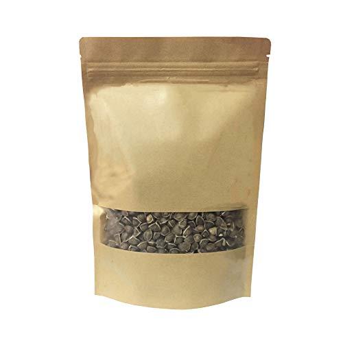 1000 Moringa Oleifera Seeds Drumstick Tree Pure Organic 100%
