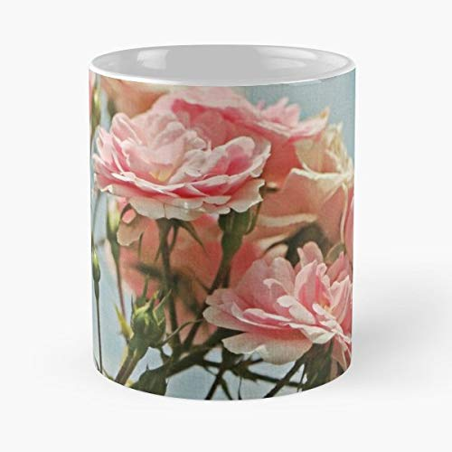 Pink Floral Photo Farmhouse Chic Pillow Rose Blush - 11 Oz Coffee Mugs Unique Ceramic Novelty Cup, The Best Gift For Holidays.