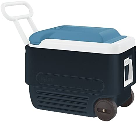 Igloo MaxCold 47 Litre Cool Box Drinks Cooler Fishing Camping Caravan