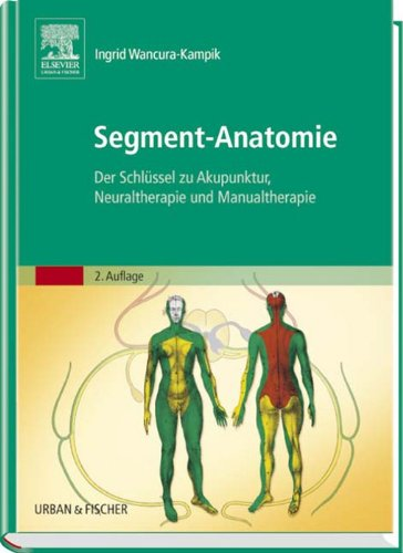Segment Anatomie  Der Schlüssel Zu Akupunktur Neuraltherapie Und Manualtherapie