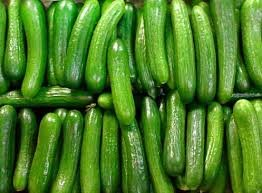 30seeds ORGANICALLY GROWN Persian Beit Alpha Cucumber Seeds Heirloom NON-GMO