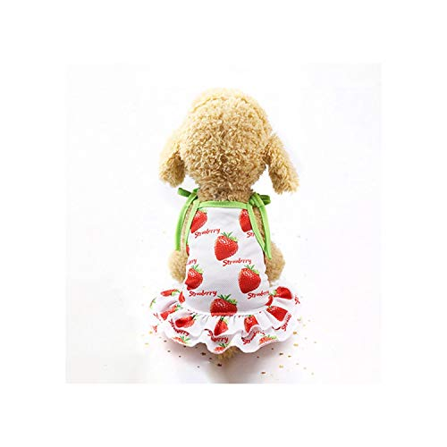 MOMO111 Fruit Dog Dress Couple Pet Dog Clothes for Dogs Skirt Summer Puppy Cat Clothes Pet Skirts for Dogs Pets Clothing,Qun Zi Cao Mei,L 8' Bully Stick Dog Treats
