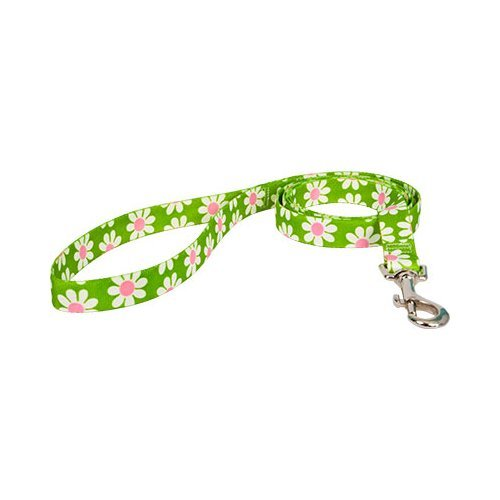 Yellow Dog Design Lead, 3/8-Inch by 60-Inch, Green Daisy