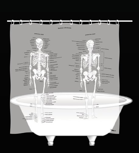 Human Skeleton Shower Curtain - EVA vinyl hot sale 2017