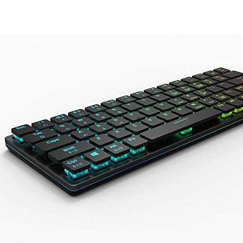 anidees Prismatic Gaming Mechanical Keyboard RGB LED Backlit Key Extra-Thin & Light, Fraly Low Profile Blue Switches, 67 Keys, Wired/Wireless Including Keycap Puller- AI-KB-PM